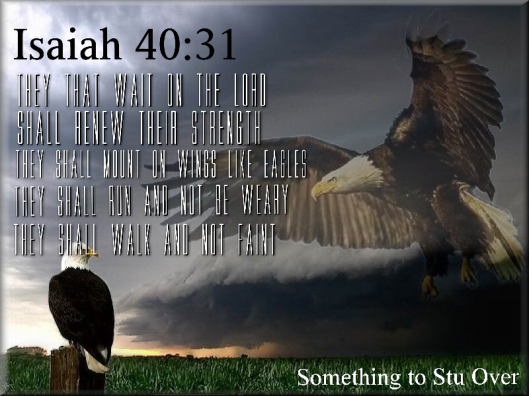 They that wait on the Lord will renew their strength