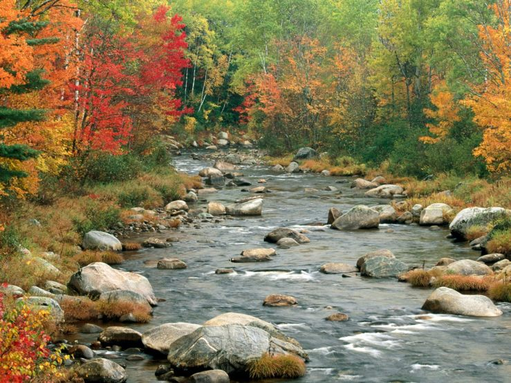 nature-wallpaper-autumn-colors-white-mountains-new-hampshire2