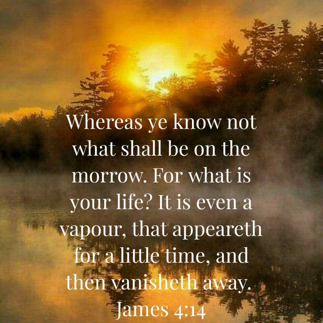 James 4:14 – Something to Stu Over